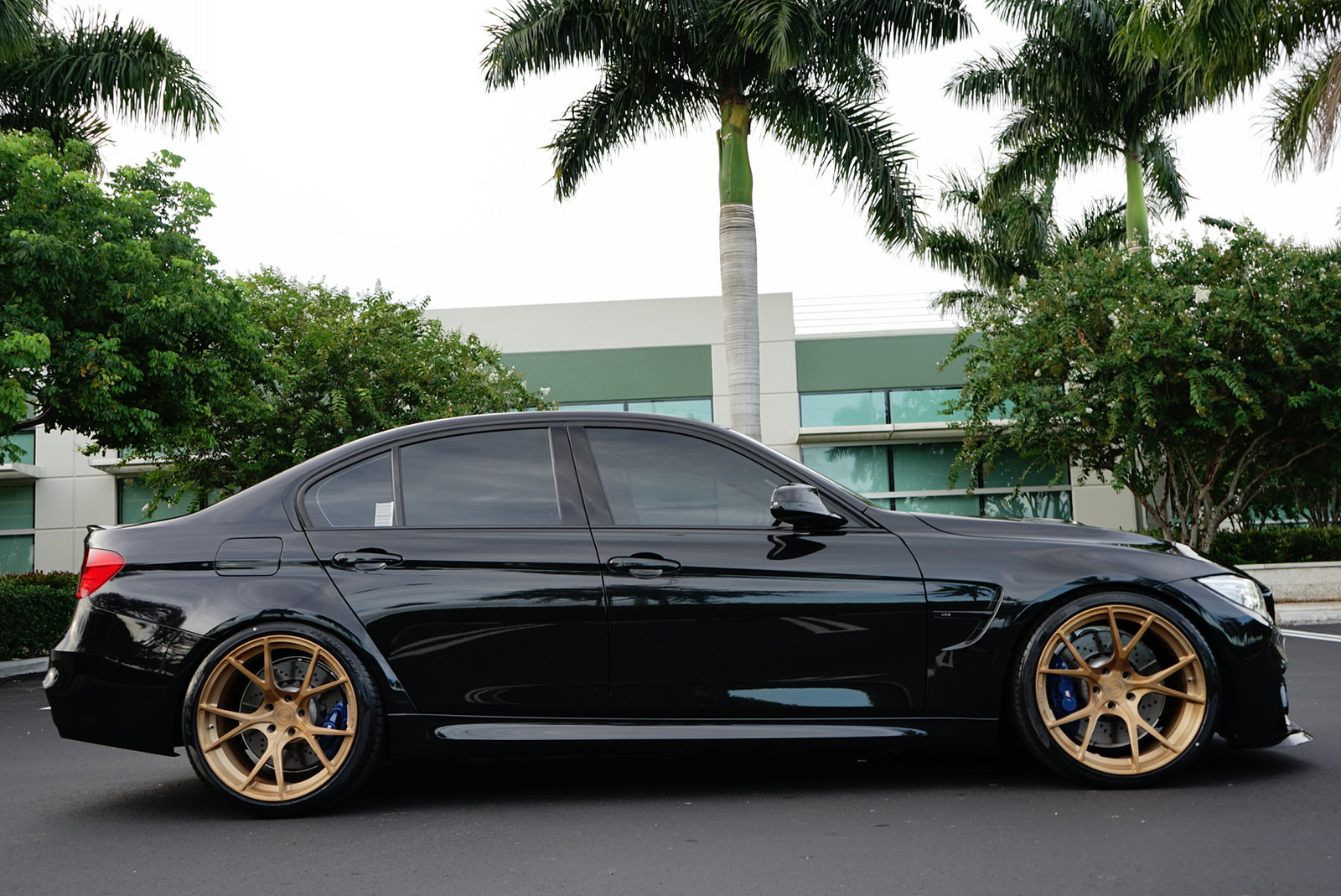 Sapphire Black F80 M3 On Velos S3 Forged Wheels Velos Designwerks Performance Tuning