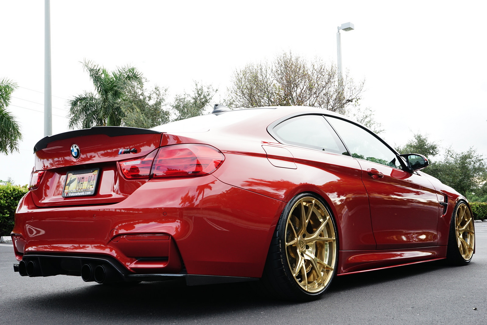Sakhir Orange Bmw F82 M4 On Velos S3 1 Pc Forged Wheels